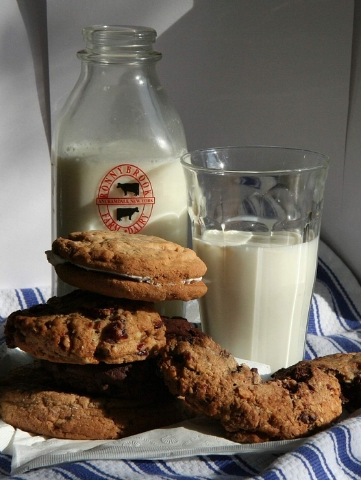 Milk and Cookies - Tami Robinett