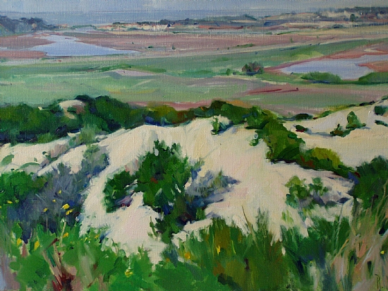 "Del Mar Bluffs by Raye Anne Marks Oil ~ 24"" x 36"""