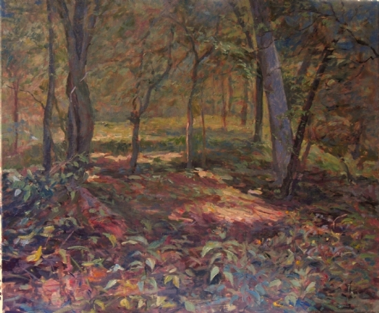 In the Woods at Gambrill Mill - Oil