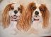 Siblings by Priscilla Krejci