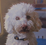 Ravi by John White Oil ~ 8 x 8