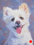 Snowy by John White Oil ~ 12 x 9