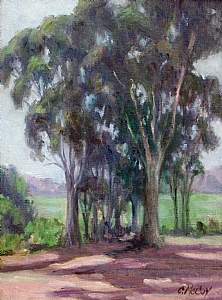 Eucalyptus Grove by Rancho Santa Fe Guild Oil ~ By Connie McCoy x
