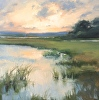 Summer Evening Marsh