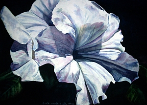 """Big Petunia"" by Donna Barnes-Roberts Watercolor ~ 22 x 30"