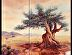 Sacred Olive Tree by Beatrice Athanas Oil ~ 48 x 54""