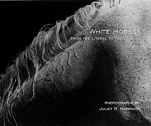 Book - White Horses - From the Literal to the Sublime by Juliet R Harrison