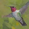 303 - Hummingbird
