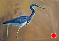 75 - 259 Great Blue Heron by Adele Earnshaw Oil ~ 5 x 7