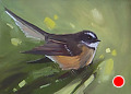 75 - 265 Fantail by Adele Earnshaw Oil ~ 5 x 7