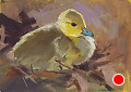 75 - 268 Gosling by Adele Earnshaw Oil ~ 5 x 7