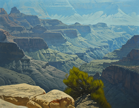 North Rim Vista - Oil