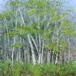 Lisa Stauffer - Underpainting for Pastel and Other Media