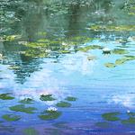 Lisa Stauffer - Painting In Pastel
