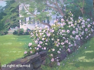Rose of David Austin by Barbara Lussier Oil ~ 16 x 20