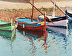 Catalan Boats by Joan Murray Oil ~ 22 x 28
