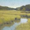 Wetlands Wonders