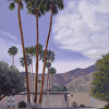 Palm Springs Dream VI
