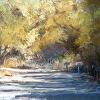 San Acacia Sunlight