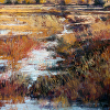 Bosque Wetlands