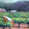 VINEYARD WORKERS (R)