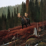 Nicholas Coleman - Art in the West