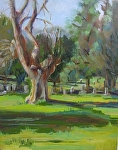 "Dead Tree Cemetery by Sue Martin Oil ~ 10"" x 8"""