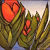 Orange Exotic
