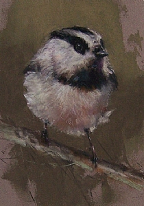 "Mountain Chickadee by Mike Beeman Pastel ~ 7"" x 5"""
