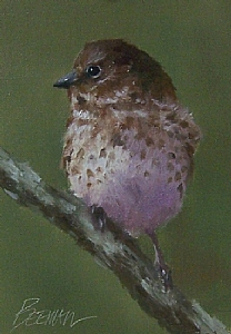 "Fox Sparrow by Mike Beeman Oil ~ 7"" x 5"""