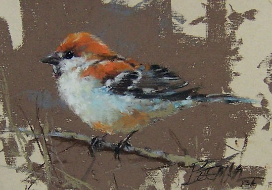 "Sparrow by Mike Beeman Pastel ~ 5"" x 7"""
