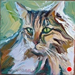 "Kitty by Cyndra Bradford Paintings Oil ~ 12"" x 12"""