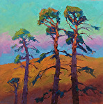"Light in the Pines by Jeff Daniel Smith Oil ~ 36"" x 36"""