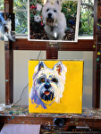 Pet Portrait on easel by Cyndra Bradford Paintings  ~  x