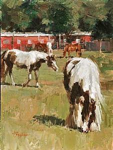 North Pasture by Lindsey Bittner Graham Oil ~ 12 x 9