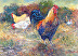 Feathered Family by Sylvia D. Gormley