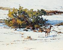 April Snow by Joe Garcia Oil ~ 14 x 21