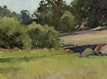 Pine Hills Ravine by Joe Garcia Oil ~ 6 x 8