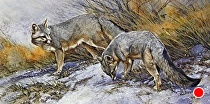 Trail Mates by Joe Garcia Watercolor ~ 11 x 30