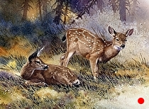 Waiting for Mom, detail by Joe Garcia Watercolor ~ 11 x 11