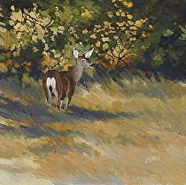 Looking for Cover--Mule Deer by Joe Garcia Oil ~ 12 x 12