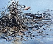 Prince of Tides, Avocet by Joe Garcia Oil ~ 18 x 22