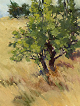 The Orchard, Pear Trees Along Pine Hills Rd, Plein Air by Joe Garcia Oil ~ 8 x 6