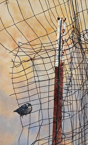 Hold On and Hang Tight by Joe Garcia Watercolor ~ 21.5 x 13.5