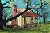 House Near Tree by Mike Ogle
