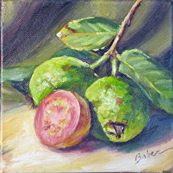 "#15 Daily Painting by Gabriele, ""Guava 2"" 6x6 oil on Gallery Wrap Canvas"