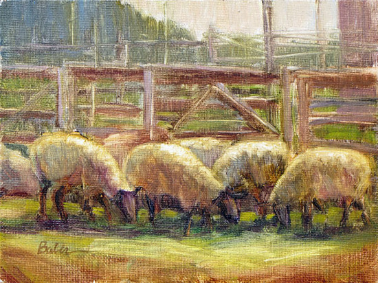 Rawhide Ranch Sheep2 by gabriele baber Oil ~ 6 x 8