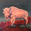 White Buffalo Nocturne