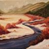 Beaver Meadows Rocky Mountain National Park