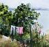 Above Lake Trasimeno, Italy by Carol Hopper